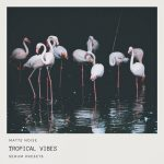 GOGOi : Tropical Vibes -SERUM SAMPLES PRESETS